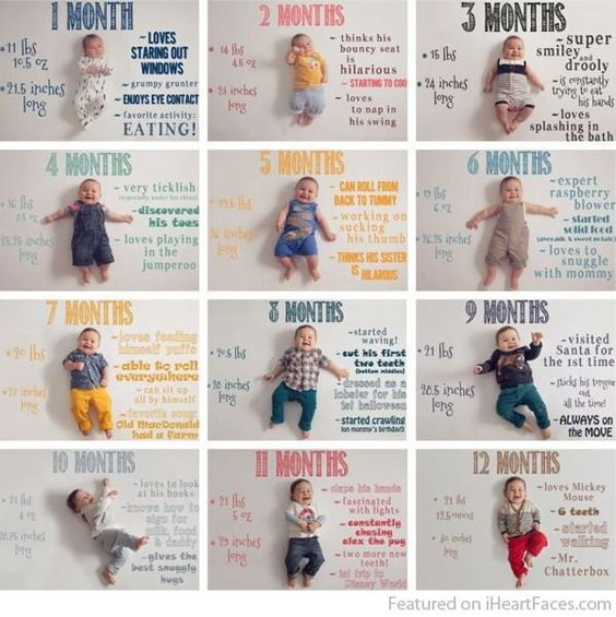 album 12 mesi bambino